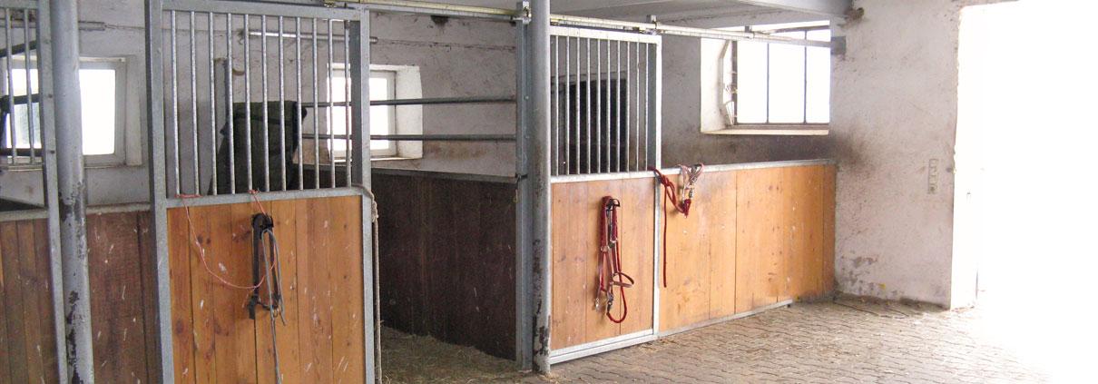 Pferdepension Holzerhof Pferdestall