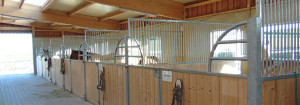 Pferdepension Holzerhof neuer Pferdestall