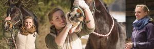Pferdezahnbehandlung durch einen Tierarzt